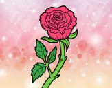 Coloring page Wild rose painted byAnia