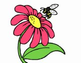 Coloring page Daisy with bee painted byrandol9572