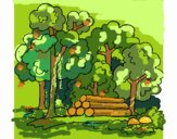 Coloring page Forest painted byFranka