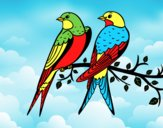 Coloring page Pair of birds painted byAnia