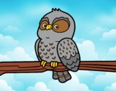 Coloring page Owl on a branch painted byAnia