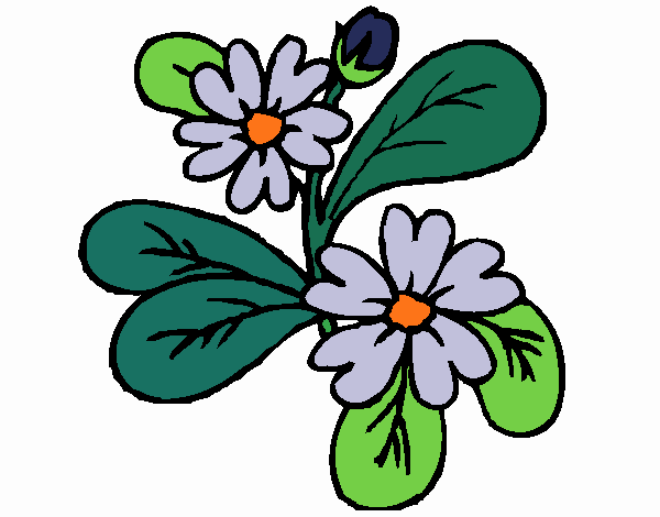 Coloring page Flowers 4a painted byKhaos006