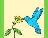 Coloring page Hummingbird and flower painted byAnia