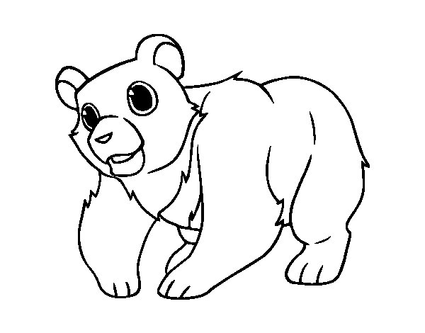 Mountain Grizzly Bear coloring page - Coloringcrew.com